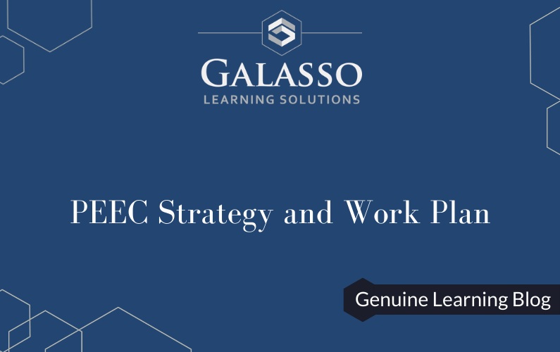 PEEC Strategy and Work Plan